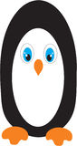 Pinguin Royalty Free Stock Image