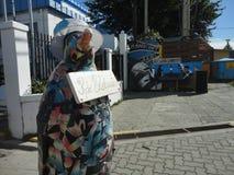 Pinguin pintado Imagens de Stock