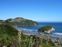 Pinguin reservation islotes在chiloe海岛上的de punihuil辣椒的 免版税库存照片