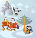 Pinguin's family Royalty Free Stock Image