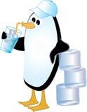 Pinguin-trinkendes Eis-Wasser Stockbilder