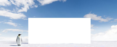 Pinguin und unbelegte Anschlagtafel Lizenzfreies Stockfoto