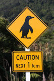 Pinguin-WARNING Stockfotos