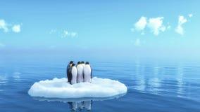 Pinguine Stockfoto