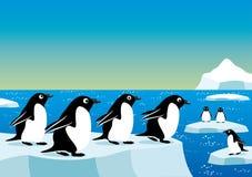Pinguine auf einer Eisscholle Stockfoto