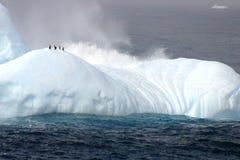 Pinguine auf Eisberg Stockfoto