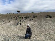 Pinguine auf Martillo-Insel, die für Touristen aufwirft stockfotos