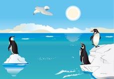 Pinguine beim Südpol 2 stock abbildung
