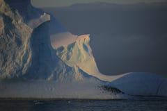 Pinguine, die auf Eisberg von Antarktik schlafen Lizenzfreie Stockfotos