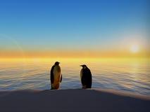 Pinguine durch Ozeansonnenuntergang Stockfotos