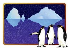 Pinguini artici Fotografia Stock Libera da Diritti