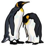 Pinguini di imperatore Fotografie Stock Libere da Diritti