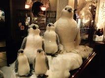 Pinguini di Natale Immagine Stock
