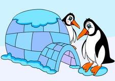 Pinguini ed iglù Immagini Stock Libere da Diritti