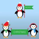 Pinguini per il Buon Natale Fotografia Stock