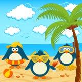 Pinguini sul vettore della spiaggia Fotografia Stock Libera da Diritti