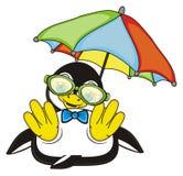 Pinguinjunge mit buntem Regenschirm Stockbilder