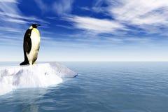 Pinguino antartico su ghiaccio Fotografia Stock