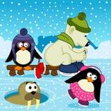 Pinguino del tricheco dell'orso polare sulla pista di pattinaggio Fotografia Stock