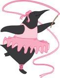 Pinguino della ballerina Fotografia Stock Libera da Diritti