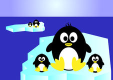 Pinguino della famiglia Immagini Stock