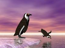Pinguino di immersione subacquea Immagini Stock Libere da Diritti