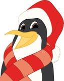 Pinguino di natale Immagine Stock Libera da Diritti