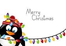 Pinguino divertente Fotografia Stock