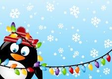 Pinguino divertente Fotografie Stock Libere da Diritti