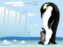 Pinguino e prole royalty illustrazione gratis