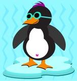Pinguino freddo su ghiaccio Fotografia Stock Libera da Diritti
