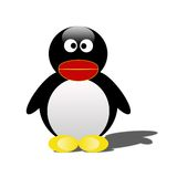 Pinguino isolato Immagine Stock Libera da Diritti