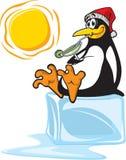 Pinguino su ghiaccio Fotografie Stock Libere da Diritti