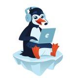 Pinguino sveglio con un computer portatile Immagini Stock Libere da Diritti