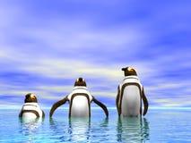Pinguins ilustração royalty free