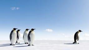 Pinguins de imperador em Continente antárctico Imagens de Stock
