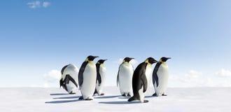 Pinguins de imperador em Continente antárctico fotografia de stock royalty free