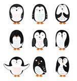 Pinguins dos desenhos animados do vetor Fotos de Stock Royalty Free