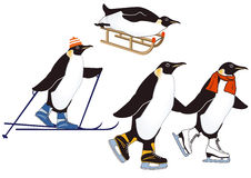 Pinguins em esportes de inverno Imagem de Stock Royalty Free