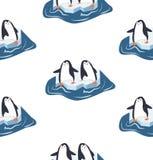 Pinguins em uma parte de teste padrão do iceberg Imagem de Stock