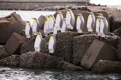 Pinguins en salerno Imágenes de archivo libres de regalías