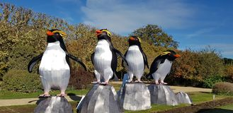 Pinguins at & x22;Jardin des plantes& x22; of Paris stock image