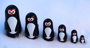 Pinguins na neve Fotos de Stock Royalty Free