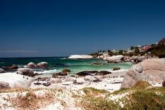 Pinguins na praia dos pedregulhos fotos de stock royalty free