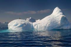 Tempanos in the Antarctic peninsula. Pinguins on tabular tempests drifting in the Weddell Sea, Antarctic peninsula.n Stock Photo