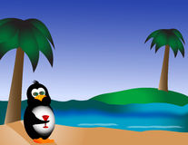 Pinguïn op het Strand met Drank Stock Foto's