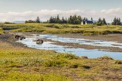 Pingvellir valley - Iceland. Royalty Free Stock Photo