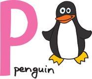 pingvin för bokstav p Royaltyfria Bilder