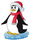 Pingvin med Xmas-locket Arkivbild