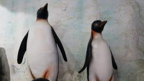 Pingvinbakgrund Royaltyfri Bild